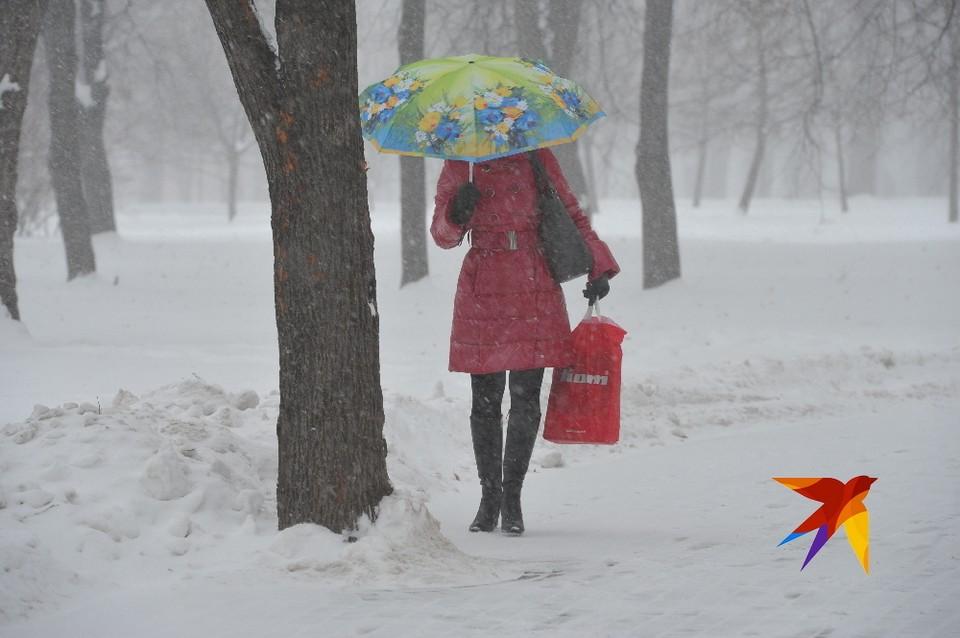 МЧС: в ближайшие часы Рязань накроет снегом.