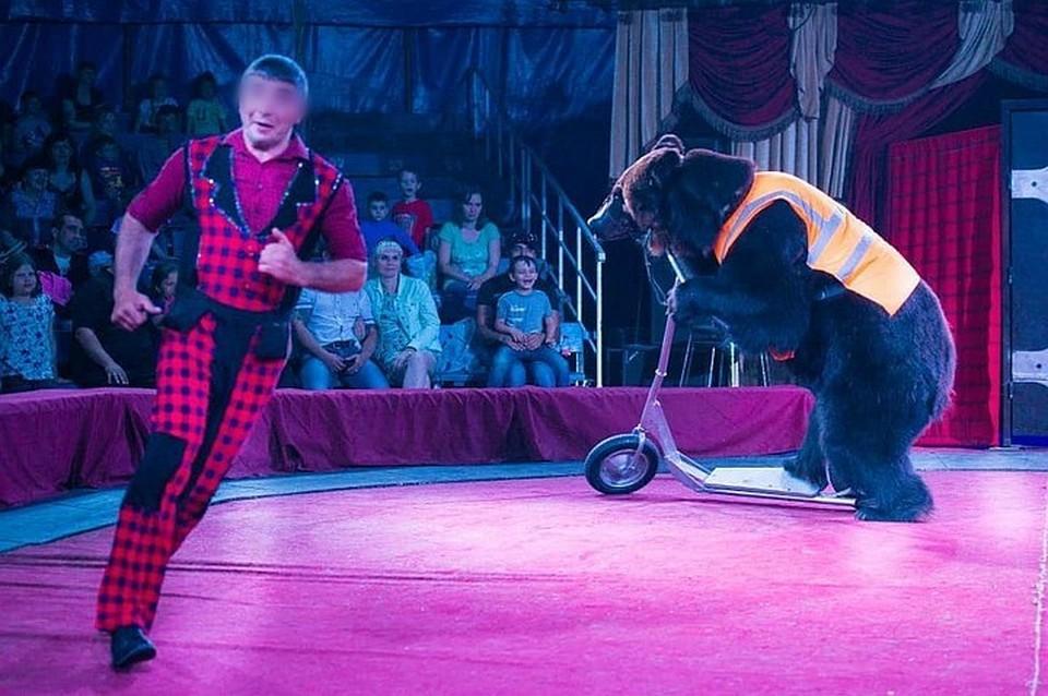 Против шапито с четвероногими подписалось шесть тысяч жителей Республики. Фото: Цирк-шапито «Аншлаг»