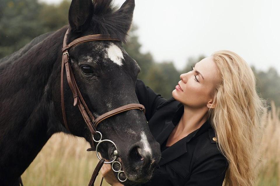 Полиция проводит проверку конюшни, где погибает лошадь Сергея Доренко