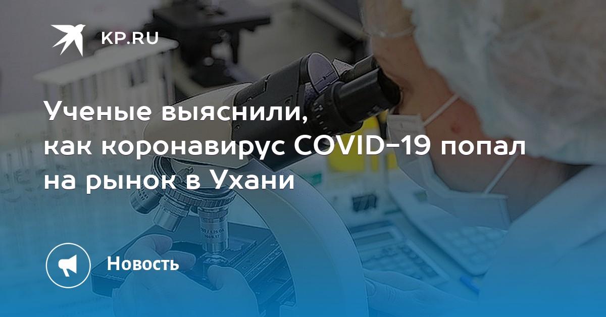 Ученые выяснили, как коронавирус попал на уханьский рынок