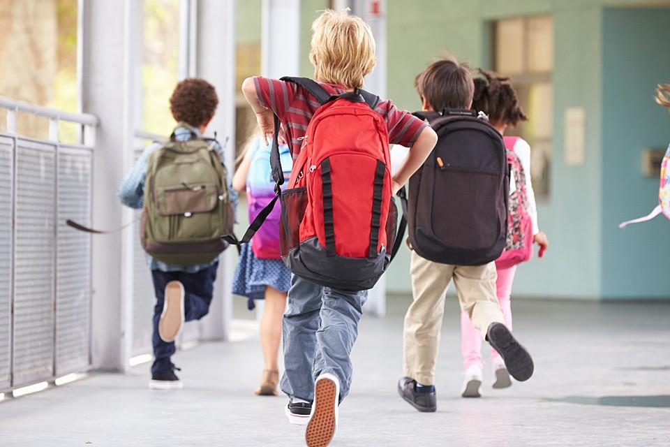 В 75 процентах школ каникулы по плану и так начинаются с 23 марта