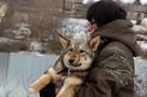 «Если собака плачет – душу отдашь»: Нижегородка ради животных взяла ипотеку