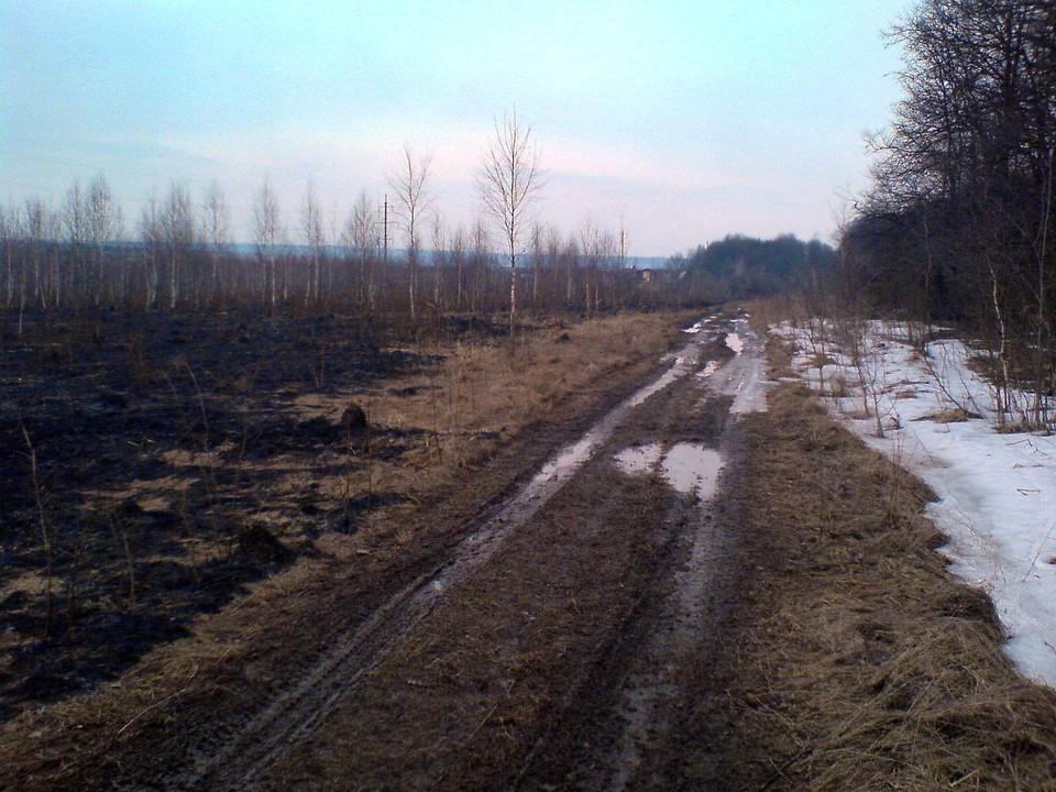 В Уловском районе Тульской области найден труп в машине посреди поля