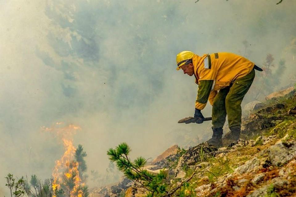 Лесные пожары в Иркутской области 2020: когда и в каких районах будет гореть тайга
