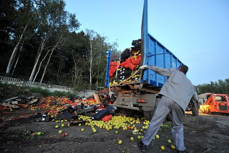 Фермеры вынуждены отправлять урожай на мусорку