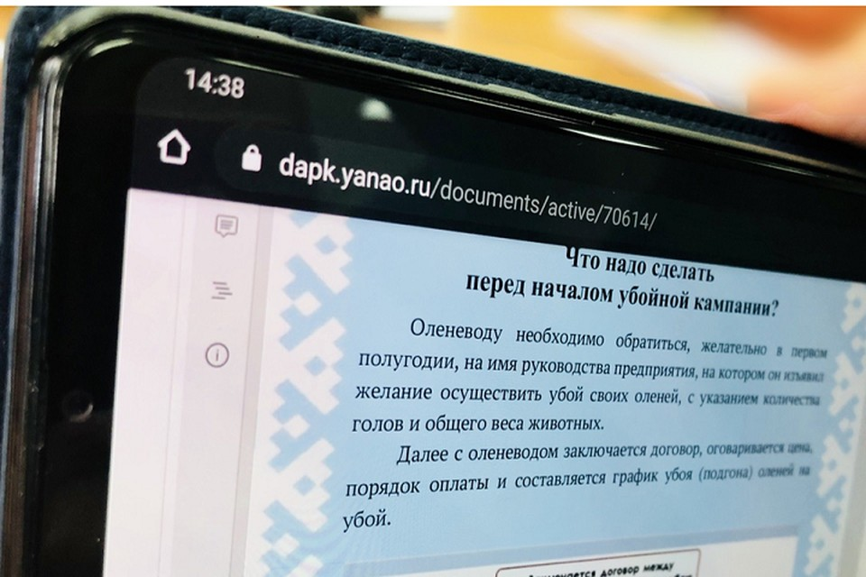 На Ямале для оленеводов разработали памятку по подготовке к убойной кампании Фото: yanao.ru