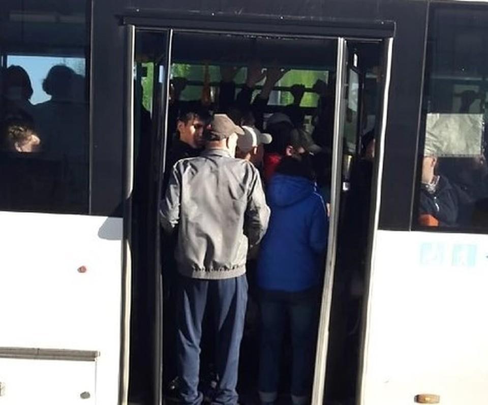 """Автобус 77 маршрута в Перми ходит переполненным. Фото: паблик """"Мой город Пермь"""" ВКонтакте"""