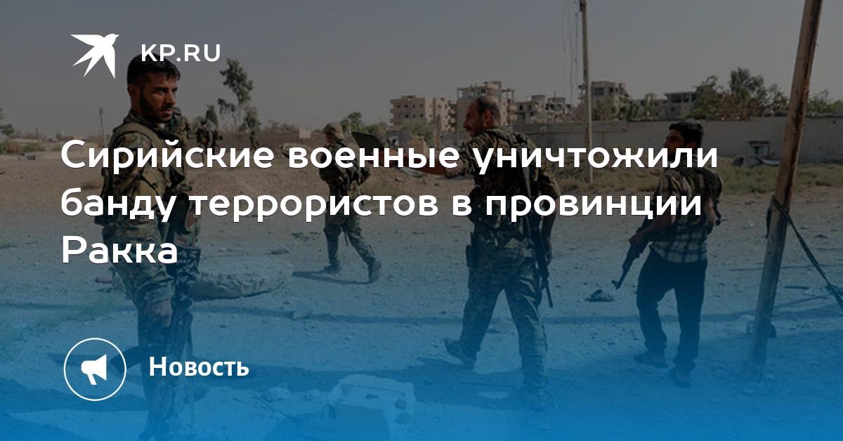 Сирийские военные уничтожили банду террористов в провинции Ракка