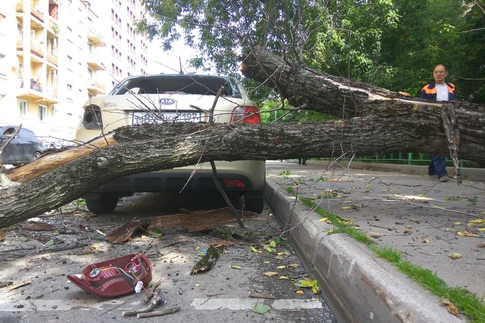 Последствия непогоды устраняли около 200 сотрудников коммунальных служб.
