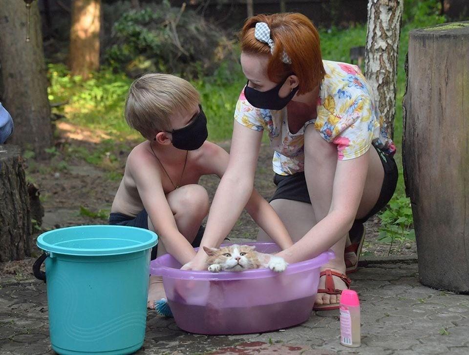 Министр здравоохранения Владимир Караник считает, что белорусы спускаются с плато по заболеваемости коронавирусом.