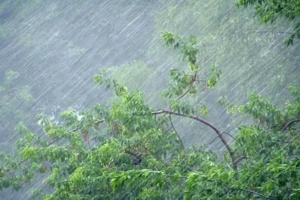 Ночью местами ожидается очень сильный дождь