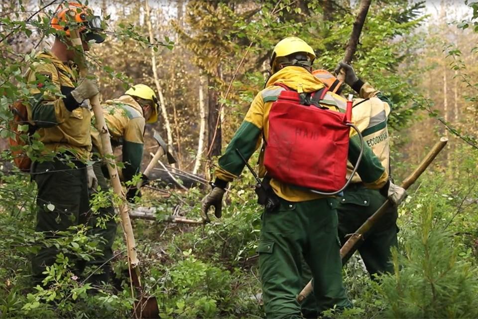В 2020 году лесопожарным силам удается ликвидировать возгорания.