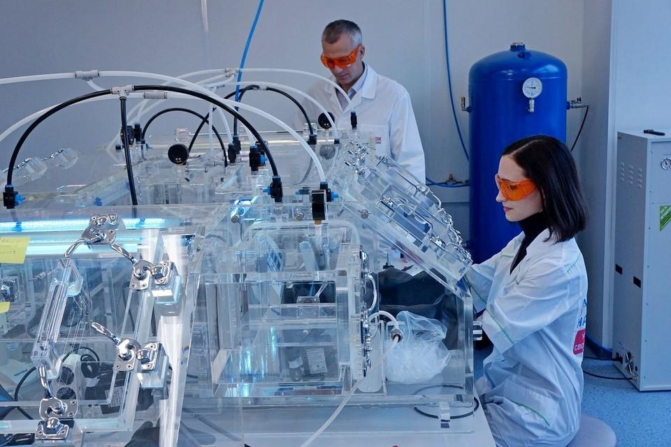 Ученые провели генетическое исследование, которое принесло неожиданные результаты. Фото: пресс-служба Московского физико-технического университета