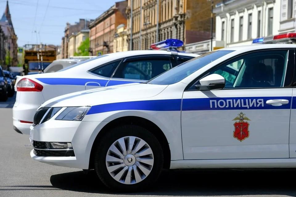 Петербурженка напала на школьника, а затем сама стала жертвой грабителей.
