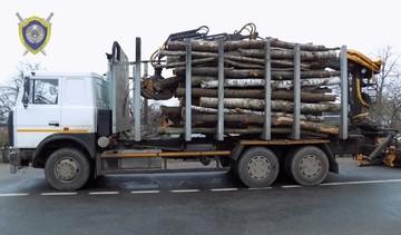Родственники погибших в ДТП с лесовозом в Ружанах отсудили у «Ивацевичдрева» более 200 тысяч рублей