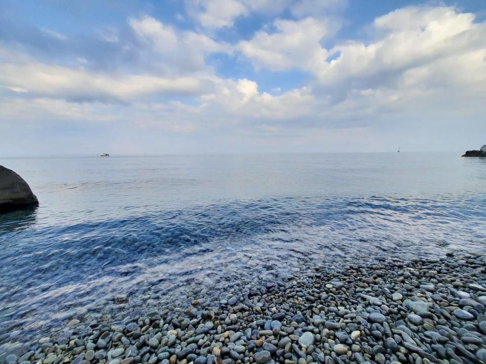Рыбы в Черном море становится все меньше