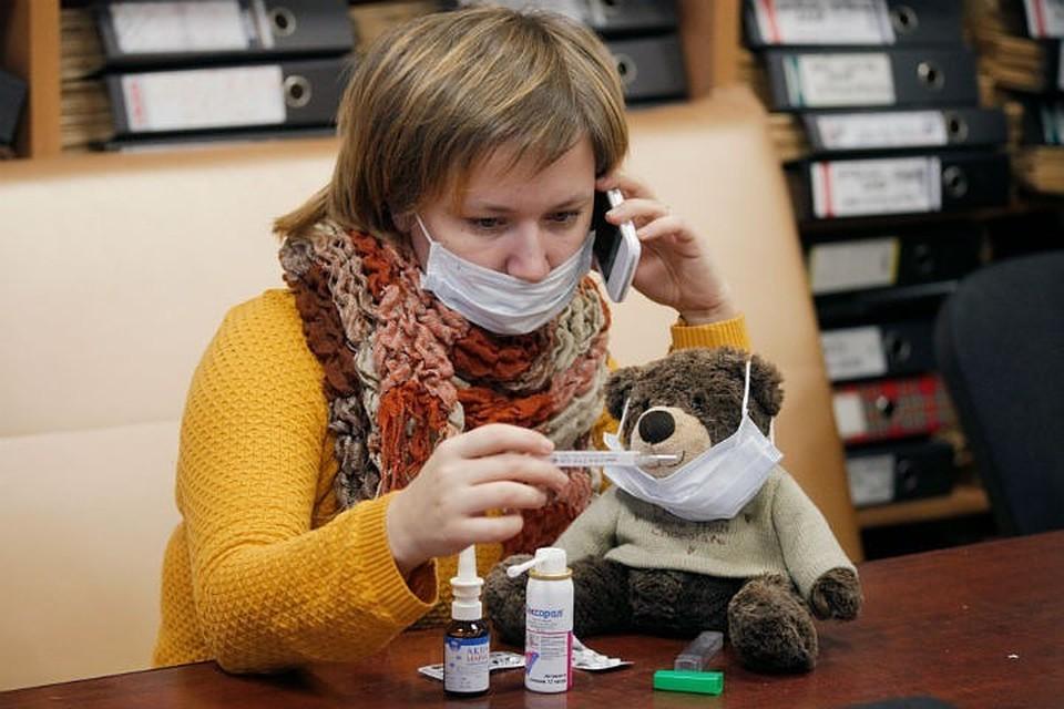 В Россию этой осенью придут четыре штамма вируса гриппа типов А и В