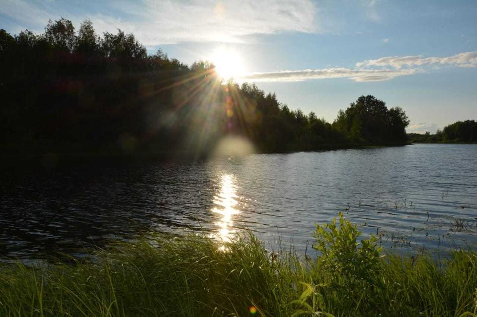 В Бутурлинском районе памятник природы «Озеро Карасное» поставили на кадастровый учёт