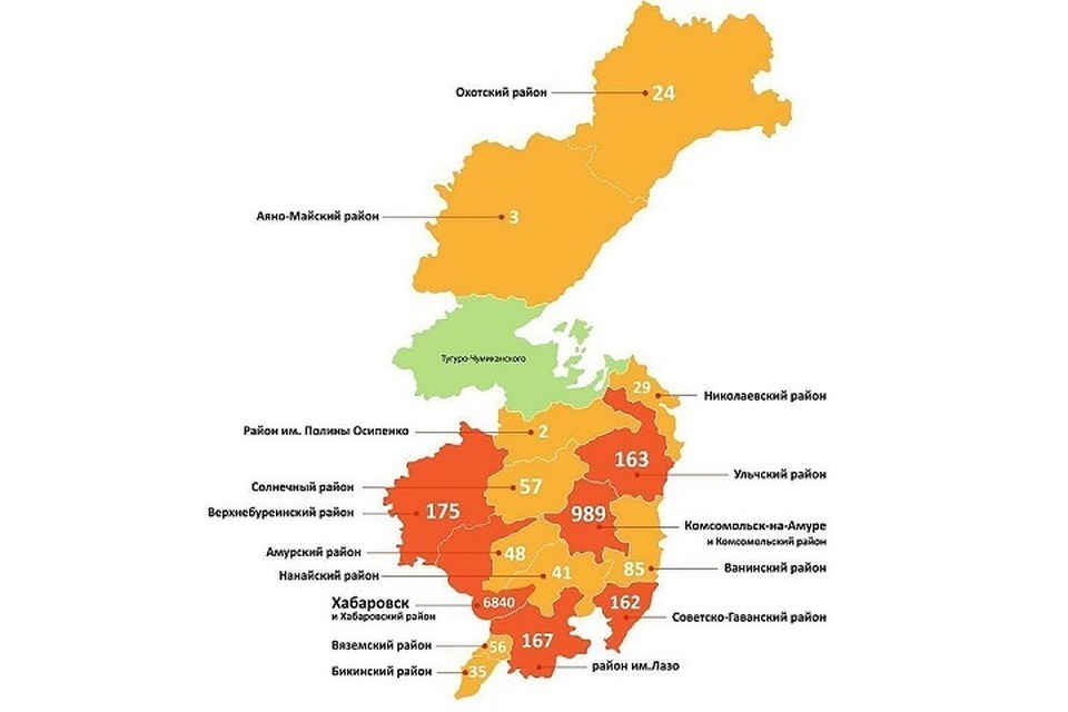 Заболеваемость коронавирусом в Хабаровском крае по районам. Инфографика минздрава Хабаровского края