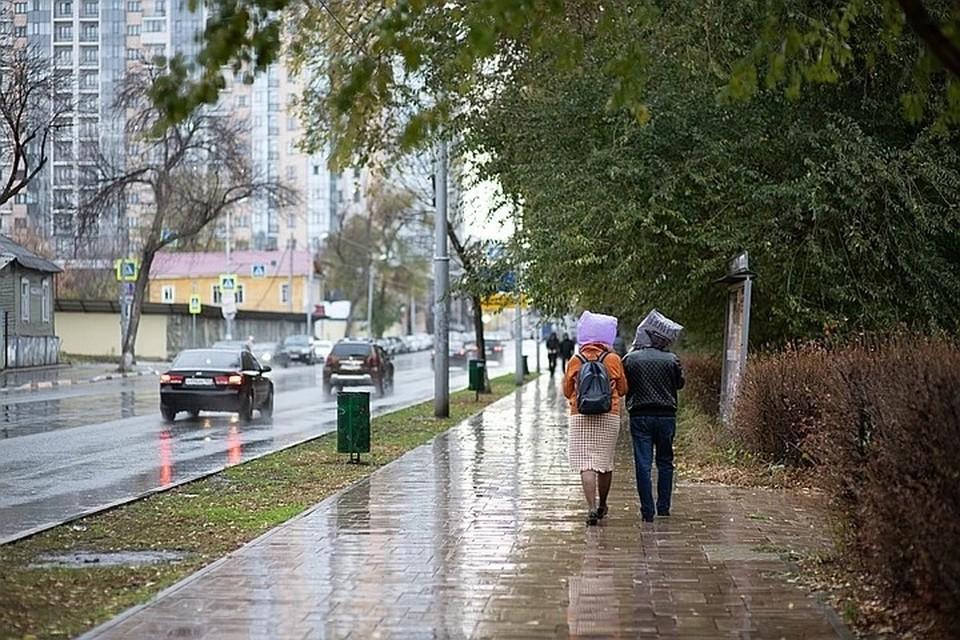 Дождь ожидают преимущественно в южных районах губернии