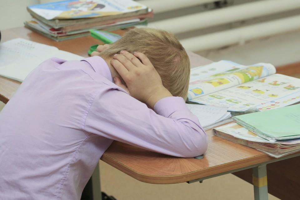 В этом году на голову школьников свалятся немало нововведений.