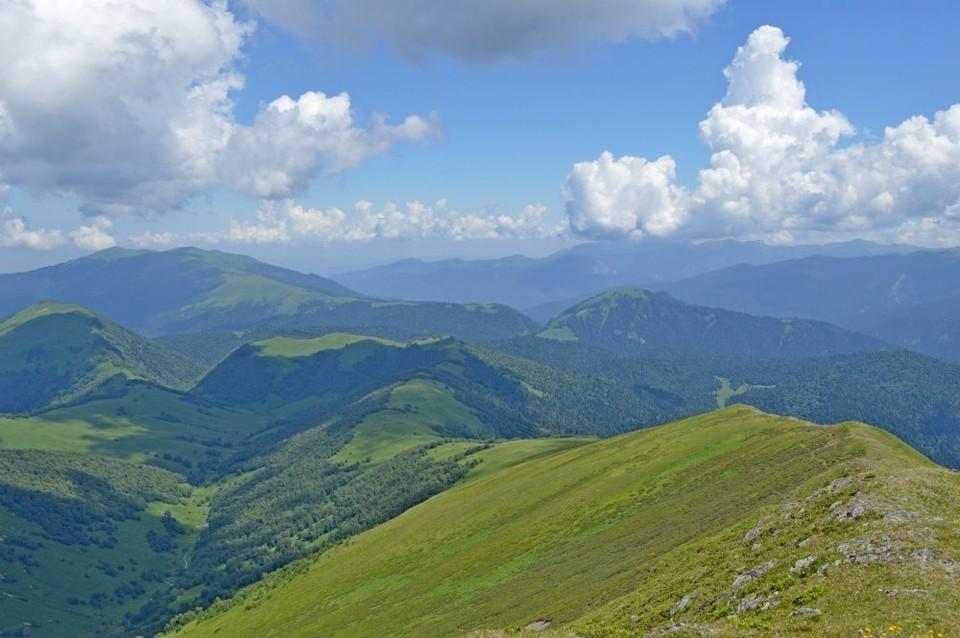 Фото: Кавказский заповедник