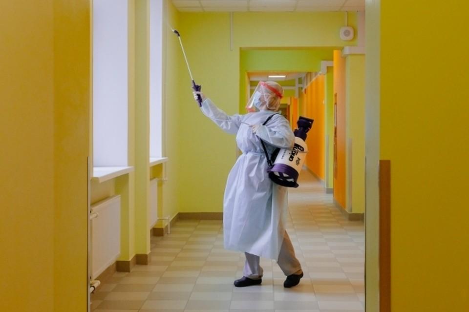 Школьники и студенты начнут учиться в условиях пандемии коронавируса