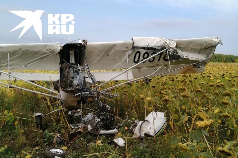 Самолет упал в поле с подсолнухами.