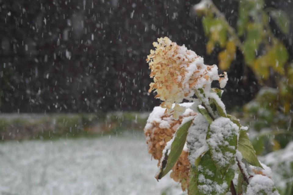 Белое покрывало накроет Заполярье, но не в сентябре.
