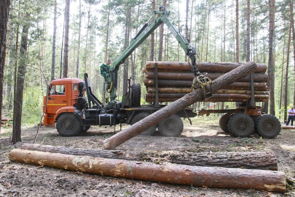 Участниками преступной группы незаконно вырубили лес на территории Вятскополянского района.