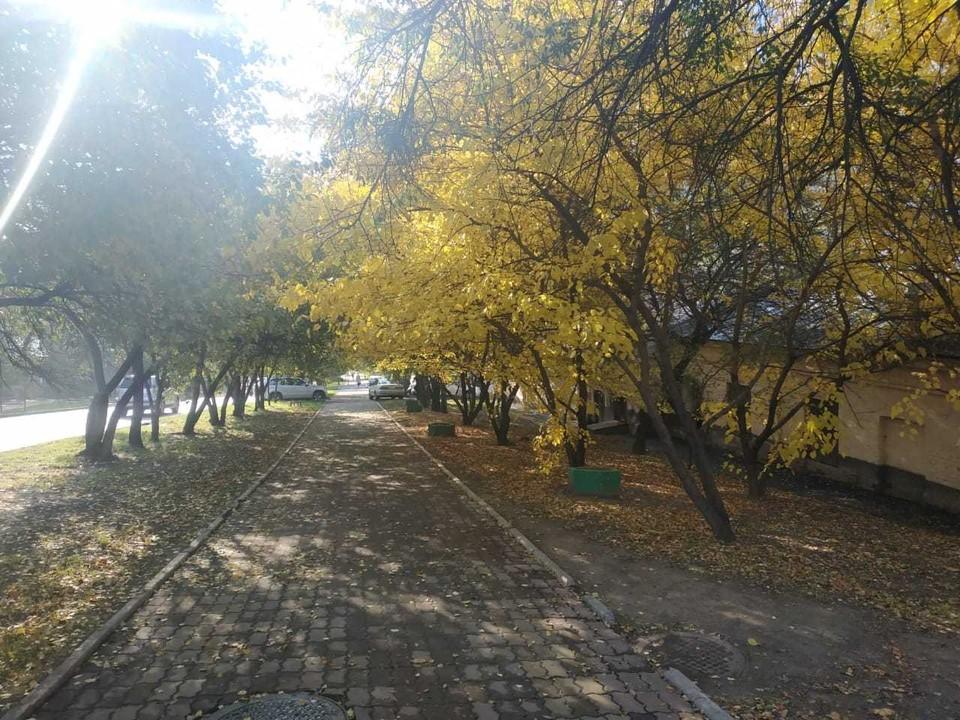 Обстановка в Хабаровске 21 сентября 2020: отключения воды, дорожные работы, заболеваемость