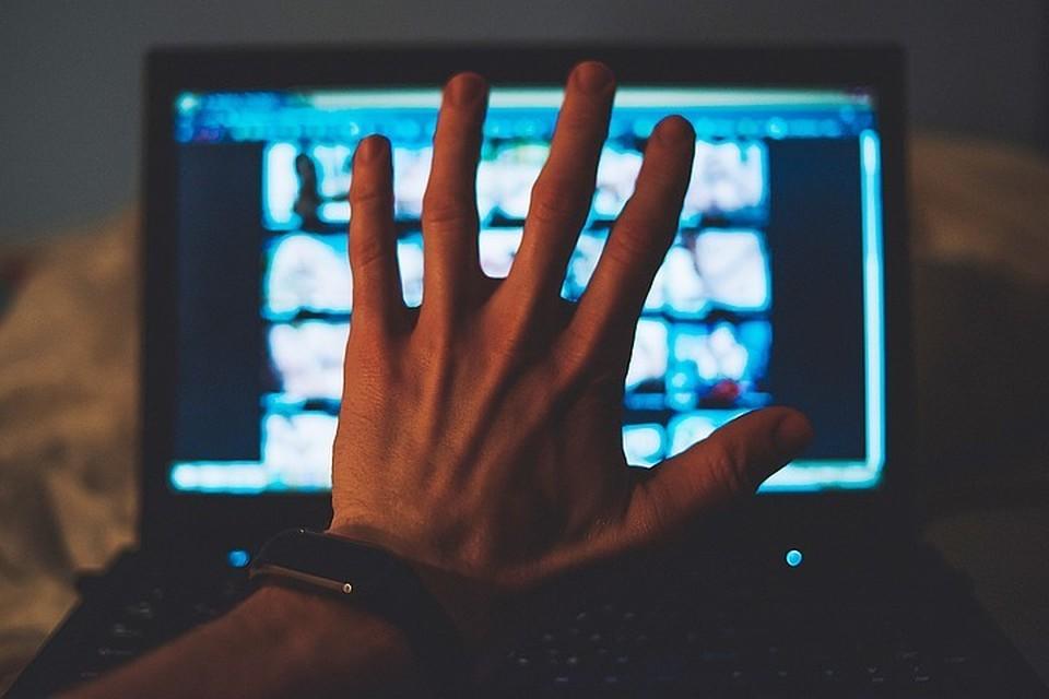 Уже установлено, что детское порно женщина сняла по заказу педофила, с которым она познакомилась в социальной сети