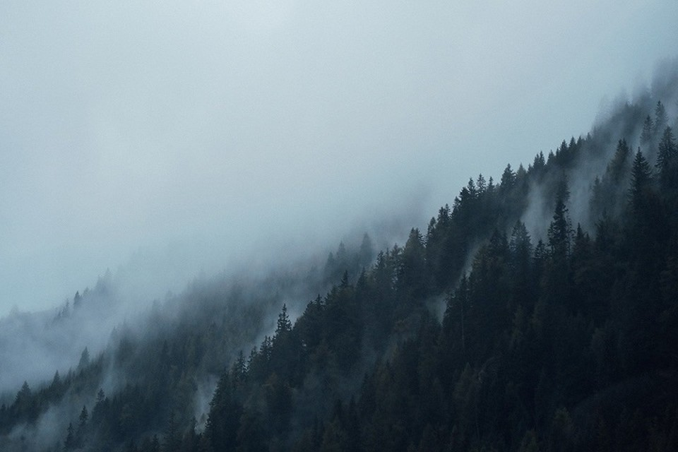 В Восточно-Казахстанской области ночью и утром 25 сентября местами ожидается туман.