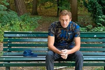 Квартиру Навального в Москве арестовали за долги