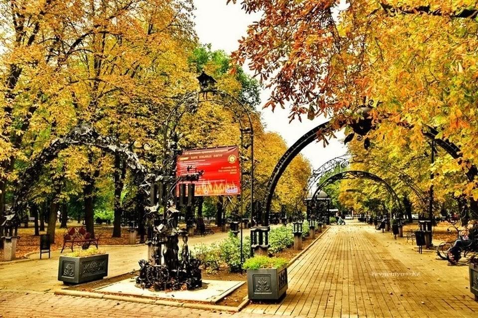 Осталось несколько дней, чтобы порадоваться красивой осени. ФОТО: Евгения Карпачева