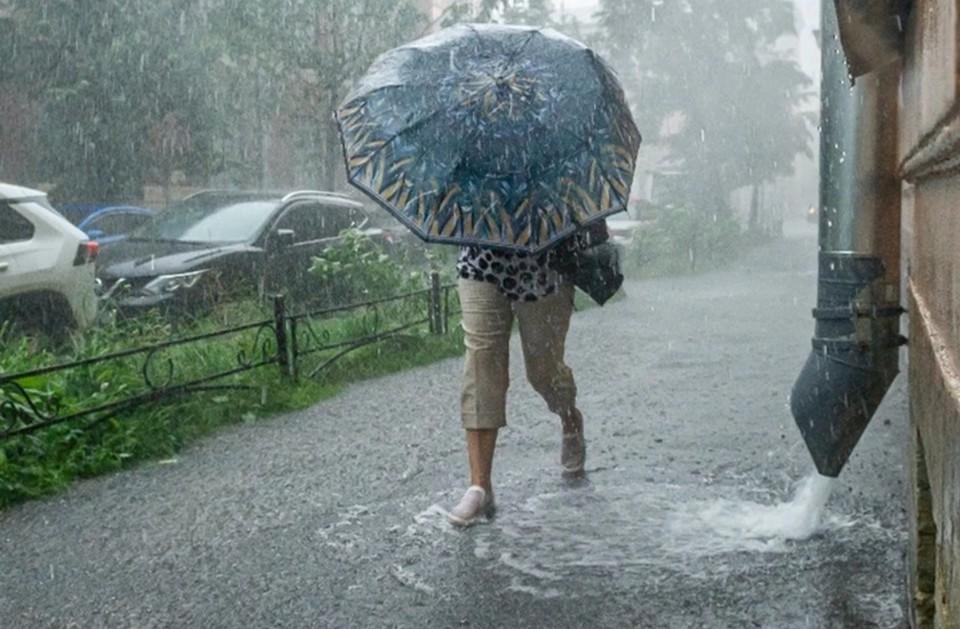Дожди зарядят в конце рабочей недели.