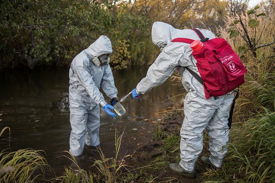 Greenpeace опубликовало первые результаты анализов своих проб воды и биоматериалов, взятых на Камчатке