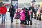 Коронавирус в Саратове, последние новости на 20 октября: школьникам могут продлить каникулы
