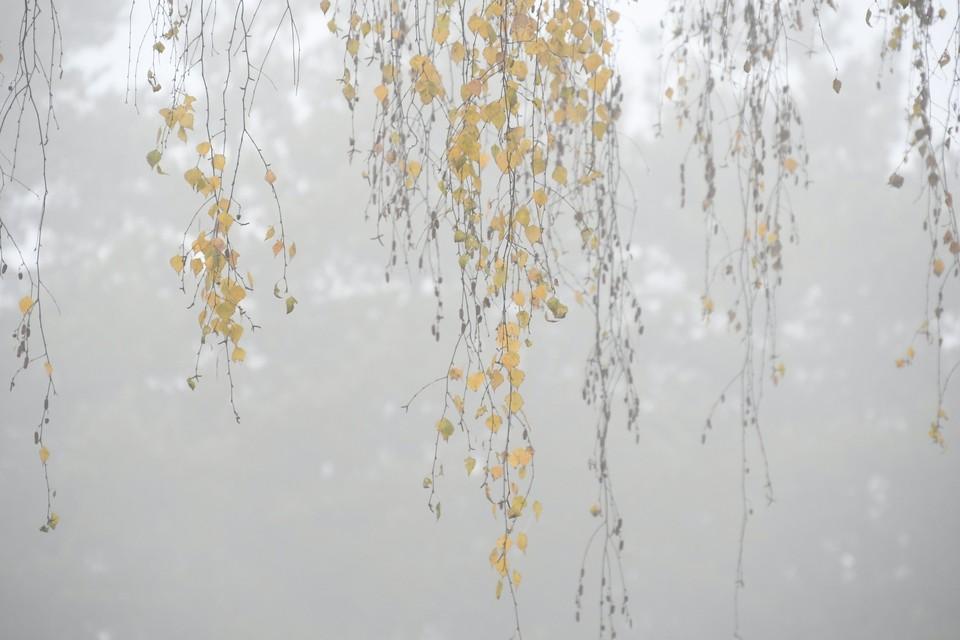 Обстановка в Хабаровске 21 октября 2020: дорожные работы, заболеваемость, отключения воды