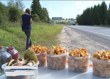Грибная рулетка: И ведь знают в Молдове, что опасно грибочки с рук покупать или по лесам собирать, но рискуют