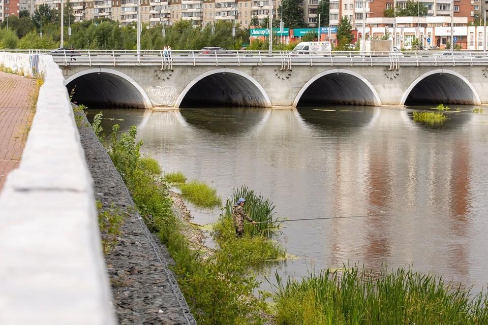 СК назвал причину смерти младенца, найденного в реке после инсценированного похищения в Челябинске