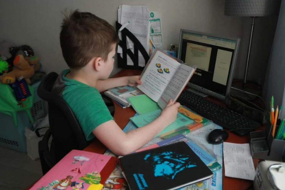 """""""Научить писать ребенка буквы через Zoom легко. А вы пробовали?"""": Дневник мамы первоклассника на дистанционке"""