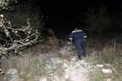Искали несколько часов: Пропавшая в молдавском лесу 12-летняя девочка нашлась