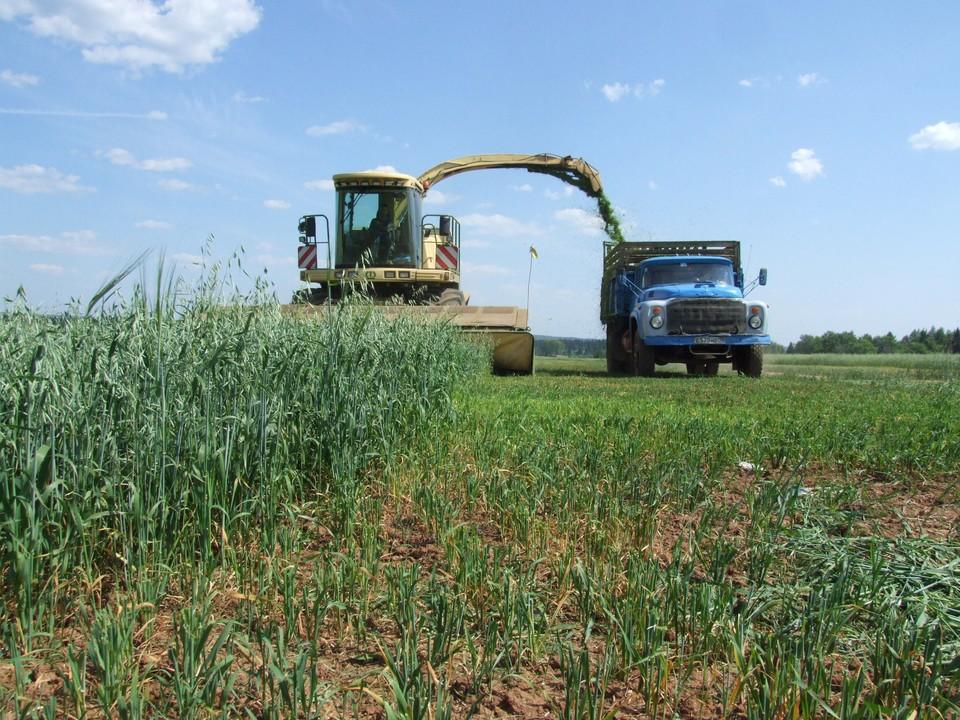 Более 150 миллионов рублей в 2020 году смогут получить фермеры в Удмуртии