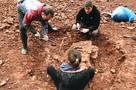 Отыскать древних ящеров и увековечить имя в истории: почему туристы едут в Котельнич?