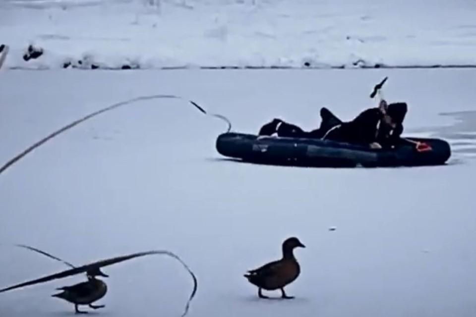 Неравнодушные сибиряки спасли утку, застрявшую на замерзшем озере. Фото: кадр из видео