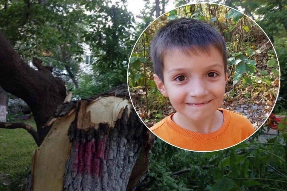 «Дерево сломало тело, но не сломило дух!»: 9-летний мальчик, выживший после несчастного случая на детской площадке, полетит в Испанию