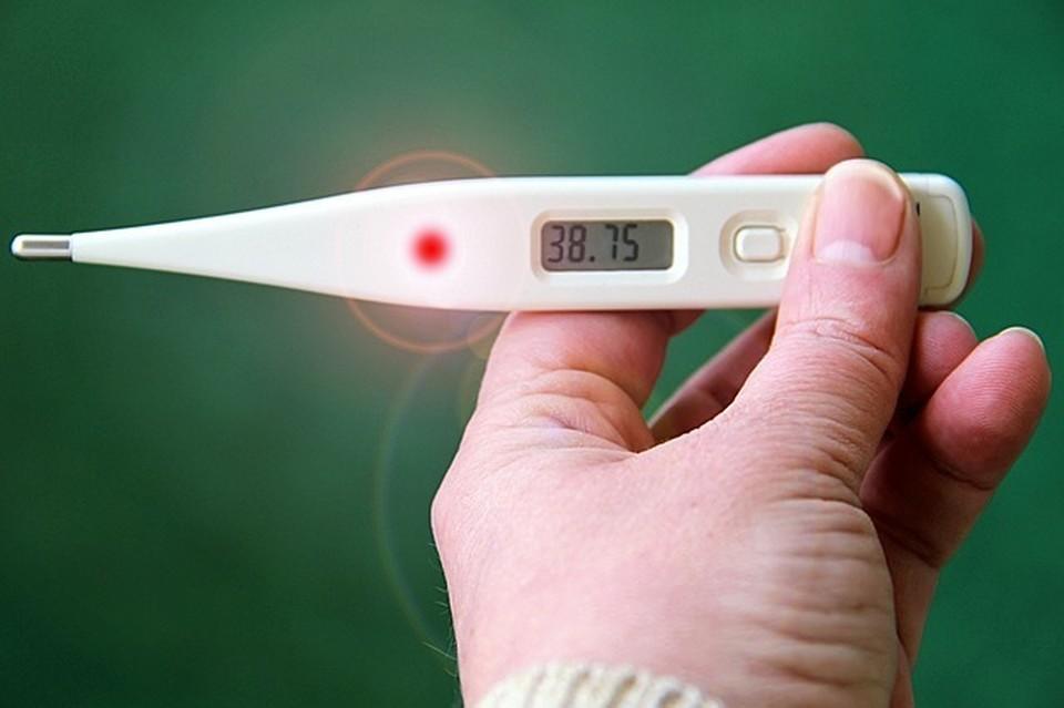 Эпидпорог по гриппу и ОРВИ превышен в Смоленске. Фото: pixabay.com.