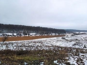 В Калужской области реки стали коричневыми. Что происходит и чем это грозит
