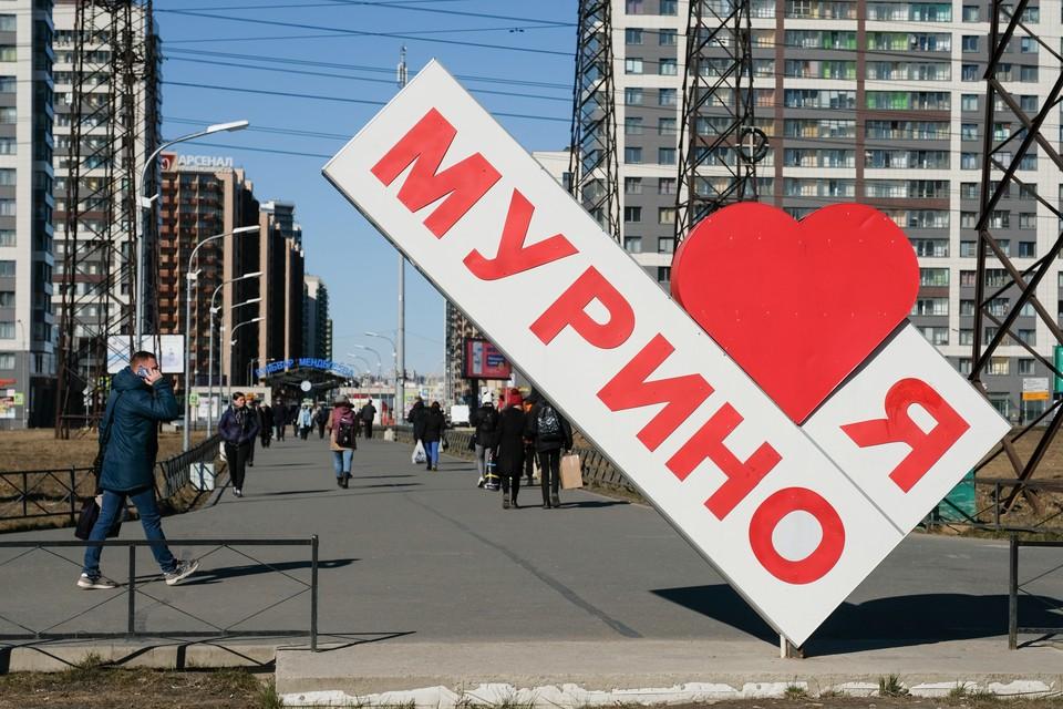 Мурино станет первым областным городом с едиными правилами идентичности